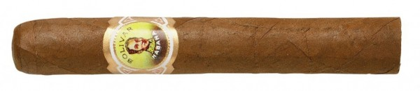 Bolivar Corona Junior