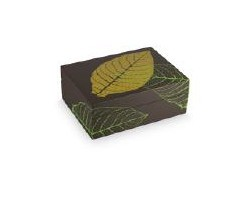 Humidor Graphic Leaf